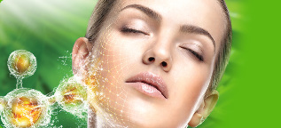 the acid for the rejuvenation of the skin name